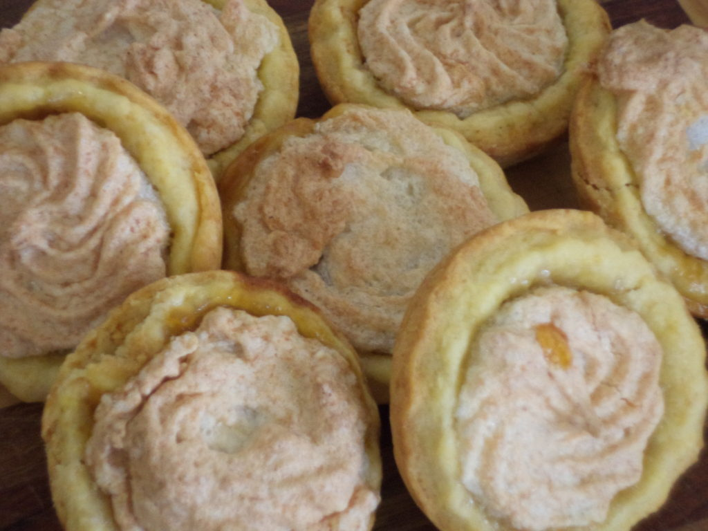 Generaal hertzog koekies with apricot jam